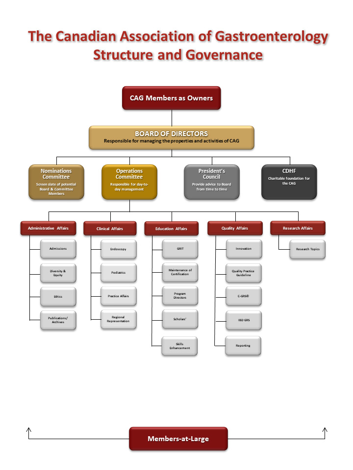 CAG org structure June2020